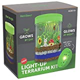 Light-up Terrarium Kit for Kids with LED Light on Lid - Create Your Own Customized Mini Garden in a Jar That Glows at Night - Science Kits for Boys & Girls - Gardening Gifts for Kids - Children Toys