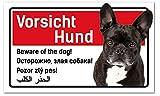 Hund Schild 5-sprachig 25x15cm Französische Bulldogge/Bully thumbnail