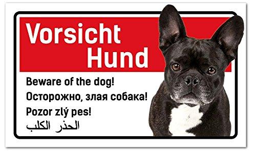 PrimeStick Vorsicht Hund Schild 5-sprachig 25x15cm Französische Bulldogge/Bully