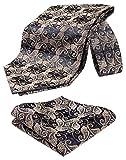 HISDERN Caballero's Paisley Florales Ascot Bolsillo Cuadrado Caja de regalo Jacquard Tejida Cravat