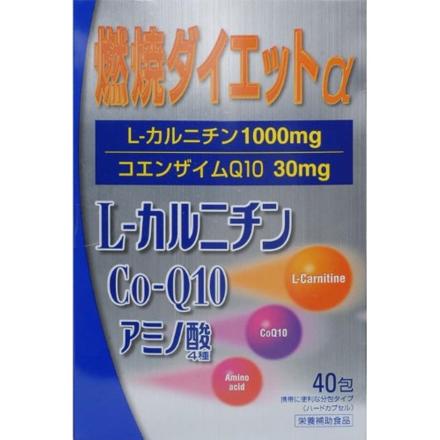 句読点永久に破裂燃焼ダイエットL‐カルニチンα 40包