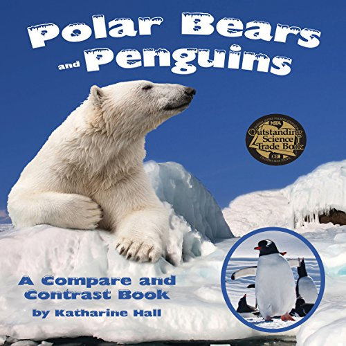 Polar Bears and Penguins copertina