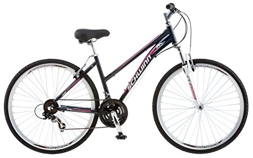 Schwinn GTX Comfort Hybrid Bike review