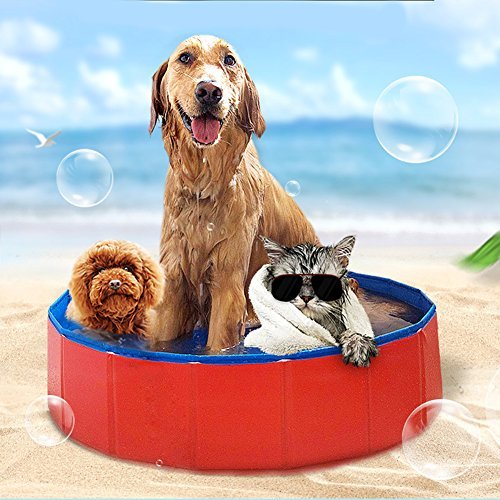 Farm & Ranch Bañera portátil plegable para perros y gatos, bañera de hidromasaje para mascotas, estanque de agua (60 cm de diámetro x 20 cm de altura)