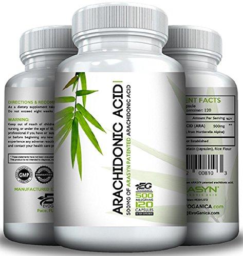 ARACHIDONIC Acid (500mg x 120ct) (10%) by EVOGANICA