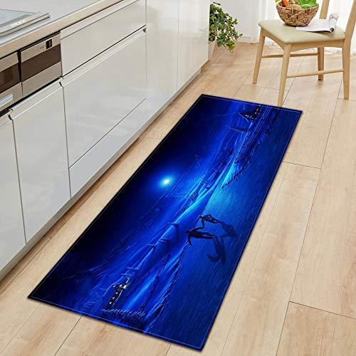XIAOZHANG runner rugs for hallway Creative art deco Crystal velvet door mat indoor outdoor carpet corridor floor bedroom living room study rugs Non-slip absorbent 60x90CM