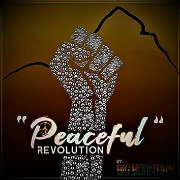 Peaceful Revolution (feat. Quino, Saxman Jerry & Raingad)