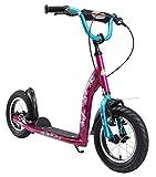 Bikestar Trottinette Enfant 2 Roues pour Garcons et Filles de 6-10 Ans  Patinette Enfant 12 Pouces Sportif  Berry & Turquoise