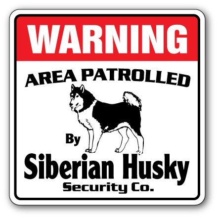 "SIBERIAN HUSKY Security Sign Area Patrolled guard breeder walker walk dog pet, 14"" X 14"" Plastic Sign"