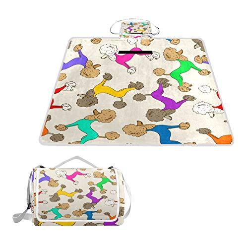 TIZORAX Picknickdecke für Hunde, Bunte Pudel, wasserdicht, für den Außenbereich, faltbar, Picknick, praktische Matte, Tragetasche für Strand, Camping, Wandern