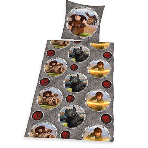 Herding DREAMWORKS DRAGONS Bettwäsche-Set, Wendekissenbezug, Bettbezug 135 x 200 cm, Kopfkissenbezug 80 x 80 cm, Baumwolle/Renforcé