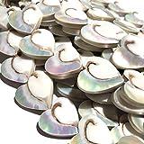 [ABCgems] Gigantic Mermaid Nautilus Shell (Gorgeous Thick Nacre- Exquisite Luster- Beautiful Spiral Matrix) 25mm Heart-Shape Natural Organic Healing Energy Beads (Full Strand- 17 Beads)