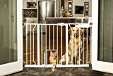 Carlson Pet Products Dog Doors, Gates & Ramps