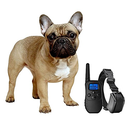 eXuby Dog Training Collar with Remote - Correct Any Behavior with 3 Training Modes (Sound, Vibration & Shock) - Rechargeable Batteries - Dog Clicker Included - Fast and Effective Dog Training