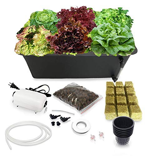 DWC Hydroponics Growing System - Medium Size Kit w/Airstone, Bucket, Air Pump, Rockwool - Best Indoor Herb Garden for Cilantro, Mint - Complete Hydroponic Setup (6 Black)