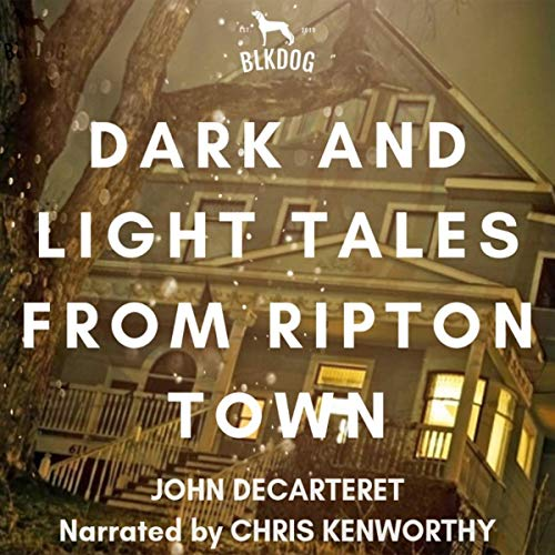 Dark and Light Tales of Ripton Town audiobook cover art