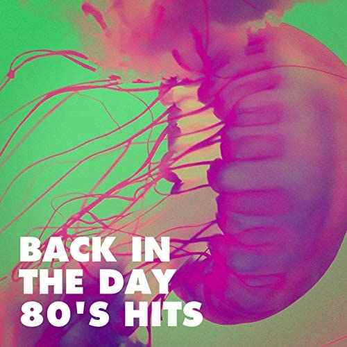 80s Pop Stars, Ultimate Pop Hits, The 80's Band
