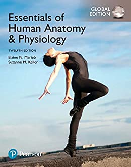 Essentials of Human Anatomy & Physiology, Global Edition by [Elaine N. Marieb, Suzanne M. Keller]