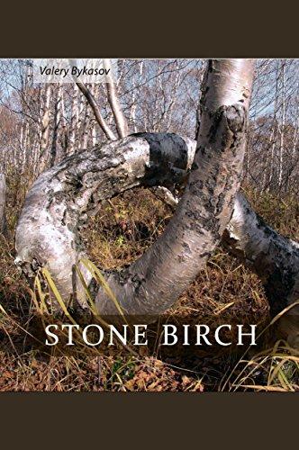 Stone Birch: Betula ermanii (English Edition)