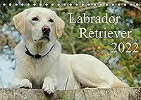 Labrador Retriever 2022 (Tischkalender 2022 DIN A5 quer): Hundekalender - Faszination Labrador (Monatskalender, 14 Seiten )