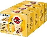 Alternative 1: Pedigree Hundefutter – für die ganz Kleinen sehr gut verträglich
