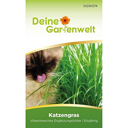 Katzengras Samen | 10 g Katzengrassamen | Saatmischung für 5 Töpfe