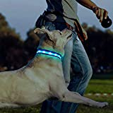 Zoom IMG-1 plartree collare per cani led