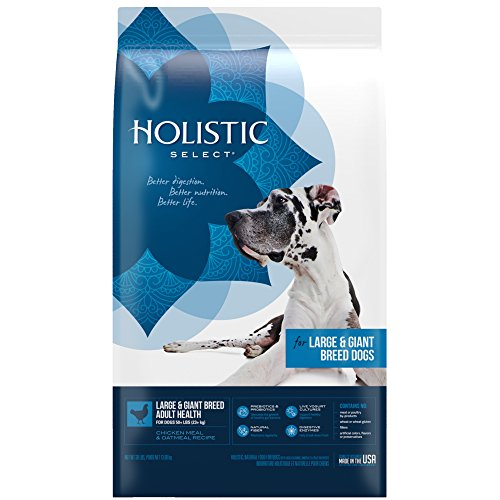 Holistic Select Natural Dry Dog Food, Large &...