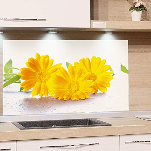 GRAZDesign Küchen-Spritzschutz Glas Küchen Herd Gasherd, Bild-Motiv Blumen gelb weiß, Glasbild als Küchenrückwand - Küchenspiegel / 100x50cm