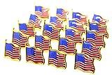 20 spille con bandiera americana USA USA