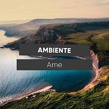 # 1 Album: Ambiente Ame