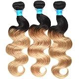 T1B/27 Ombre Brazilian Body Wave 3 Bundles Black To Honey Blonde Two Tone Color Human Hair Weave 100% Real Virgin Brazilian Hair (10 12 14 inch, T1B/27)