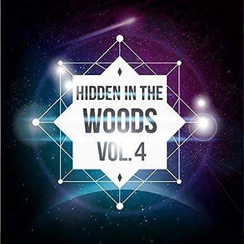 Hidden In The Woods Vol.4
