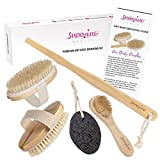 3 x Brush - Dry Body Brushing Set by Snoozing Beauty   SOFT Cleansing Face Brush   MEDIUM and FIRM Body Brushes   Pumice Stone for Dry Skin Foot Care