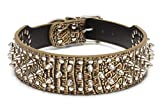 BIG: Heavy-duty dog collar for large breeds, made with quality materials that stand up to big dogs such as mastiffs, great danes, german shepherds, and rottweilers BOLD: This fancy dog collar with spikes features striking shiny gold faux croco materi...