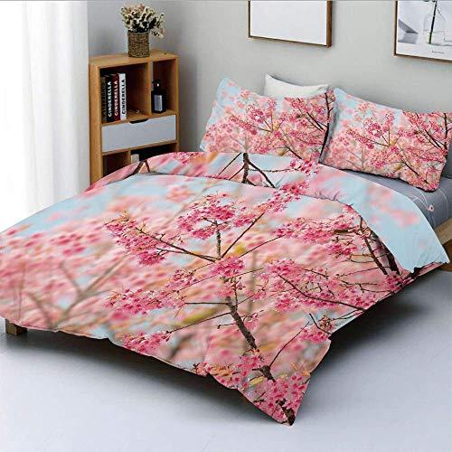 Juego de funda nórdica, ramas japonesas de flor de cerezo de Sakura llenas de imagen de belleza primaveral Juego de cama decorativo de 3 piezas con 2 fundas de almohada, rosa claro azul bebé, el mejor