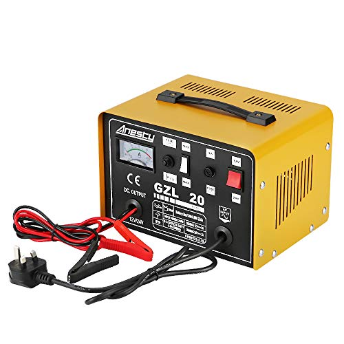 Anesty Car Battery Charger, 12V/24V 20A 20Amp Heavy Duty Battery Charger,...