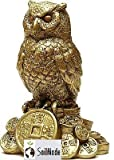 Feng Shui Owl for Money and Wisdom Showpiece - 10 cm by Make in India