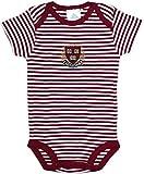 Harvard University Shield & Crest Striped Baby Bodysuit Maroon