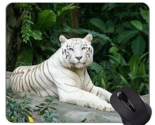 Yanteng Alfombrilla de ratón Tigre Blanco, Alfombrilla de ratón Animal con Bordes cosidos