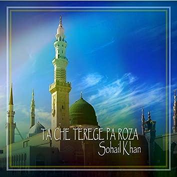 Ta Che Terege Pa Roza - Single