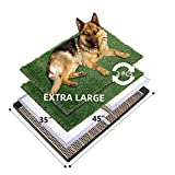 MEEXPAWS Dog Grass Pee Pads for Dogs with Tray | Extra Large 45×35 in | 2× Dog Artificial Grass Pads Replacement| Rapid Drainage | 2 Training Pads | Indoor Dog Litter Box