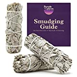 PURPLE CANYON White Sage Bundles - (3 Pack) - Sage Smudge Stick for Home Cleansing Incense Healing Meditation and California Smudge Sticks Rituals (4 Inch)