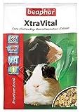 BEAPHAR – XTRAVITAL – Alimentation pour cochon d'Inde appétente et équilibrée – Contient des graines, nutriments végétaux et proteines animales – Riche en vitamines et en fibres – 2.5kg