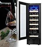 Mini Fridge 19 Bottle - 12 inch Wine Cooler Refrigerator, Built-in or Freestanding, with Stainless Steel & Double-Layer Tempered Glass Door, Digital Temperature Control Cooling for Home Office Bar