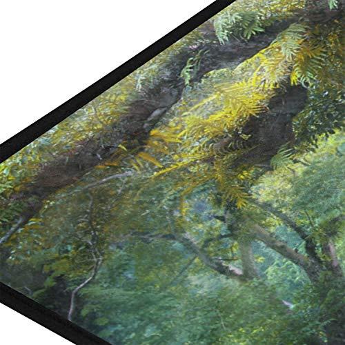 XiangHeFu Teppiche Steam Forest Elephant Soft 39 x 20 Zoll Fußmatten Teppich personalisierte Matte dekorativ für Wohnzimmer Esszimmer Schlafzimmer Küche