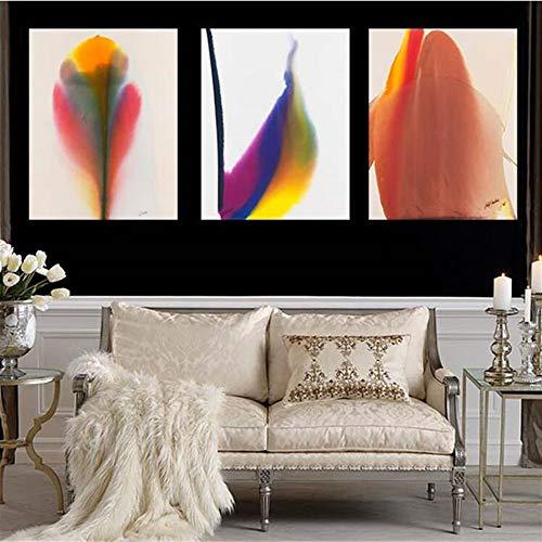 2017 3 piezas pintura al óleo de pared impresa sobre lienzo de plumas coloridas para decoración del hogar, arte imágenes de salón sin rame F