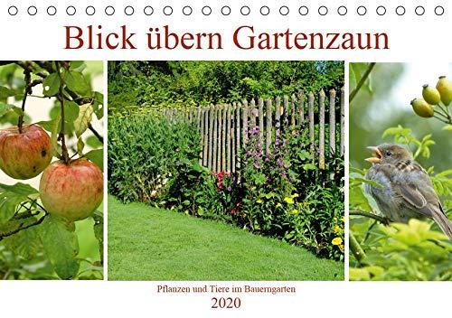 Blick übern Gartenzaun (Tischkalender 2020 DIN A5 quer): Pflanzen und Tiere im Bauerngarten (Monatskalender, 14 Seiten ) (CALVENDO Natur)