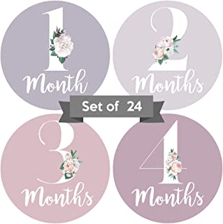Baby Monthly Stickers   Floral Baby Milestone Stickers   Newborn Girl Stickers   Month Stickers for Baby Girl   Baby Girl ...