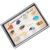 freneci 15 Unids / Set Colección de Rocas Y Minerales Herramienta de Enseñanza de La Escuela de Ciencias de La Tierra